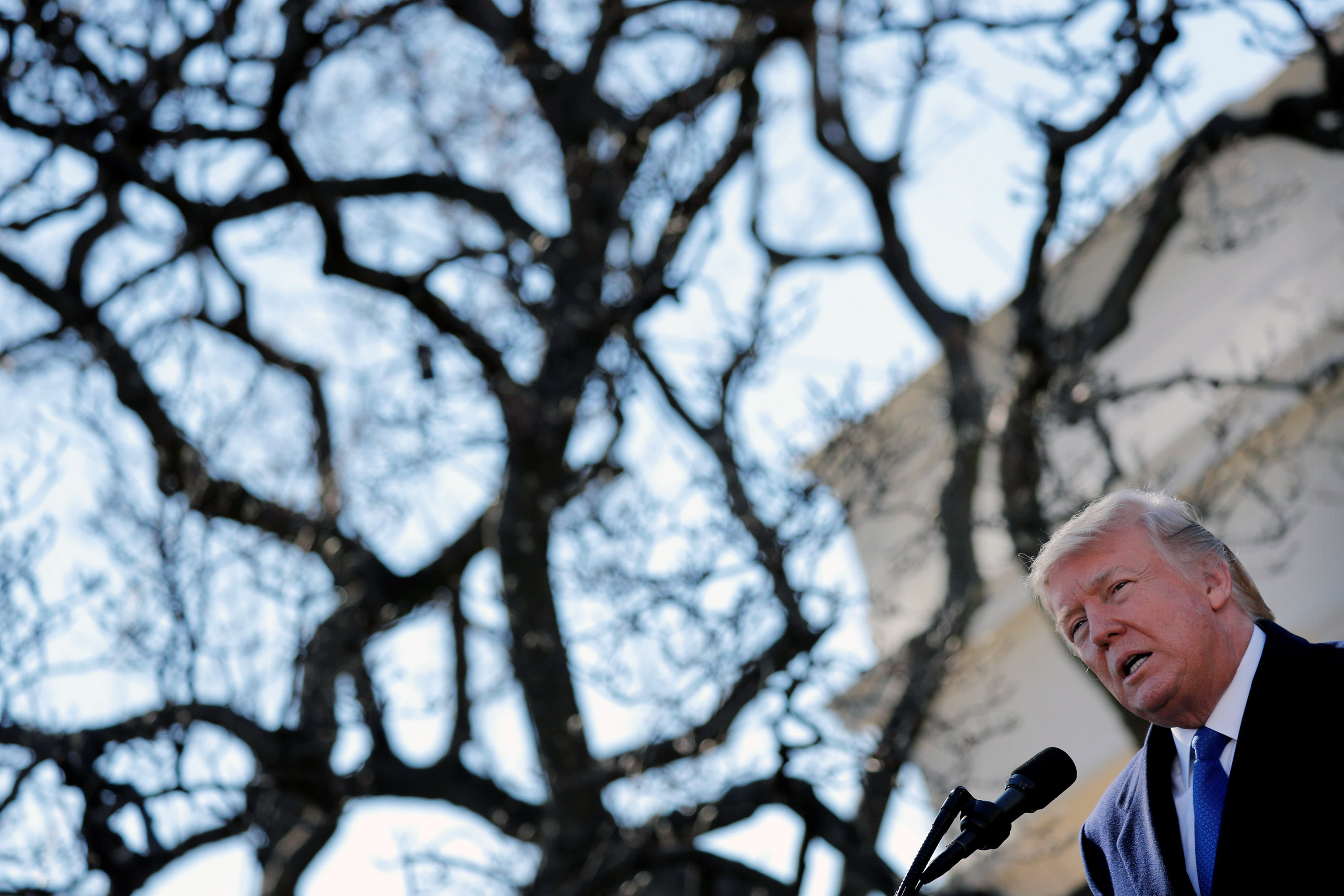 U.S. President Donald Trump addresses the annual March for Life rally, taking place on the National Mall, from the White House Rose Garden in Washington