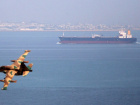 An Iranian military fighter plane flies past an oil tanker during naval manoeuvres in the Gulf and Sea of Oman April 5, 2006. REUTERS/Fars News/File Photo