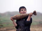 A boy carries a mortar shell left behind by forces loyal to Syria's President Bashar al-Assad at the Azaalana checkpoint, after rebels took control of two military posts from the forces, in the southern Idlib countryside