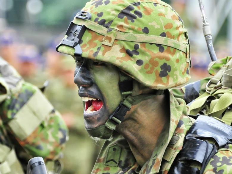 Image: A JGSDF soldier. Wikimedia Commons/Rikujojieitai Boueisho. CC BY-SA 3.0.