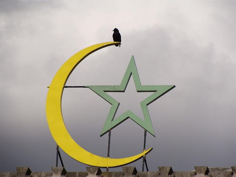 A crow on a Muslim crescent atop the Mosquée de Paris, France. Wikimedia Commons/@Jebulon