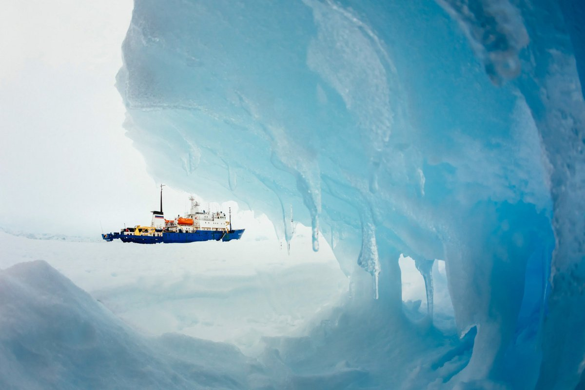 The MV Akademik Shokalskiy is pictured stranded in ice in Antarctica, December 29, 2013. An Antarctic blizzard has halted an Australian icebreaker's bid to reach a Russian ship trapped for a week with 74 people onboard, rescuers said on Monday. The Aurora Australis had to return to open waters about 18 nautical miles from the stranded Akademik Shokalskiy because of poor visibility, the Australian Maritime Safety Authority (AMSA), which is co-ordinating the rescue, told Reuters. Picture taken December 29, 20