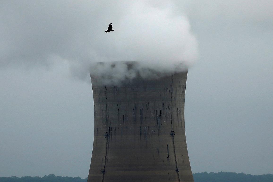 A bird flies over the Three Mile Island Nuclear power plant in Goldsboro, Pennsylvania, U.S. May 30, 2017. REUTERS/Carlo Allegri