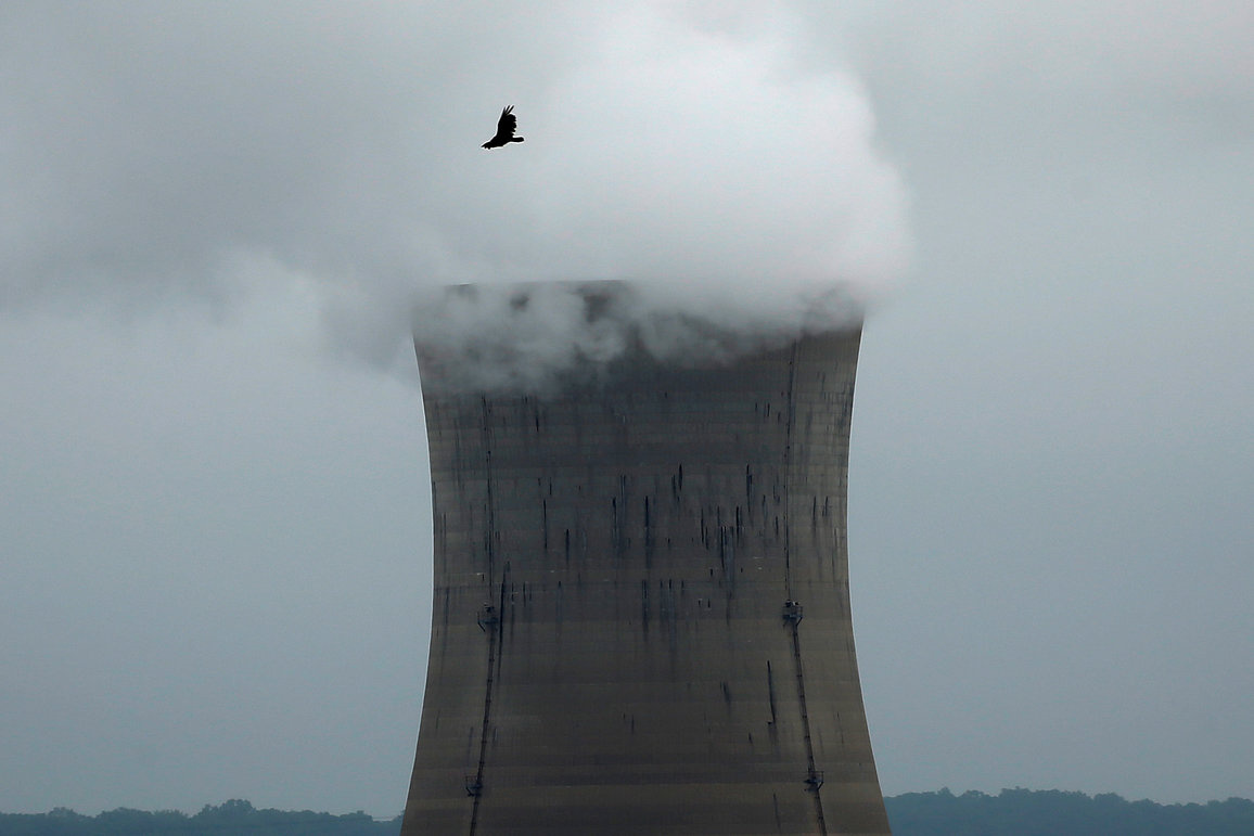 A bird flies over the Three Mile Island Nuclear power plant in Goldsboro, Pennsylvania, U.S. May 30, 2017. REUTERS/Carlo Allegri