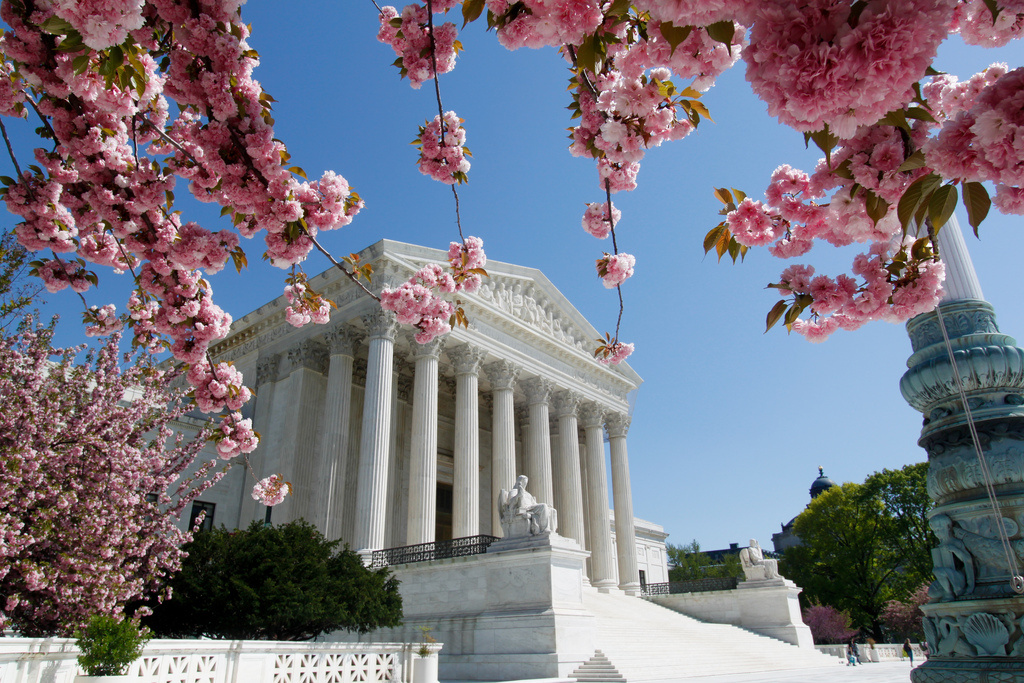 Supreme Court under cherry blossoms. Flickr/Creative Commons/Tim Sackton