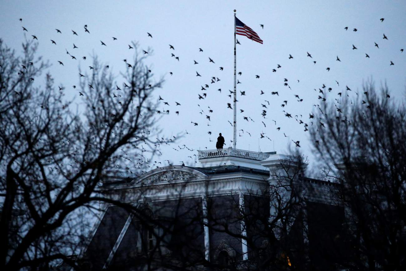 Birds fly over a pair of rooftop Secret Service counter-snipers as they watch over U.S. President Donald Trump as he participates in the National Christmas Tree lighting ceremony near the White House in Washington, U.S. November 30, 2017. REUTERS/Jonathan Ernst