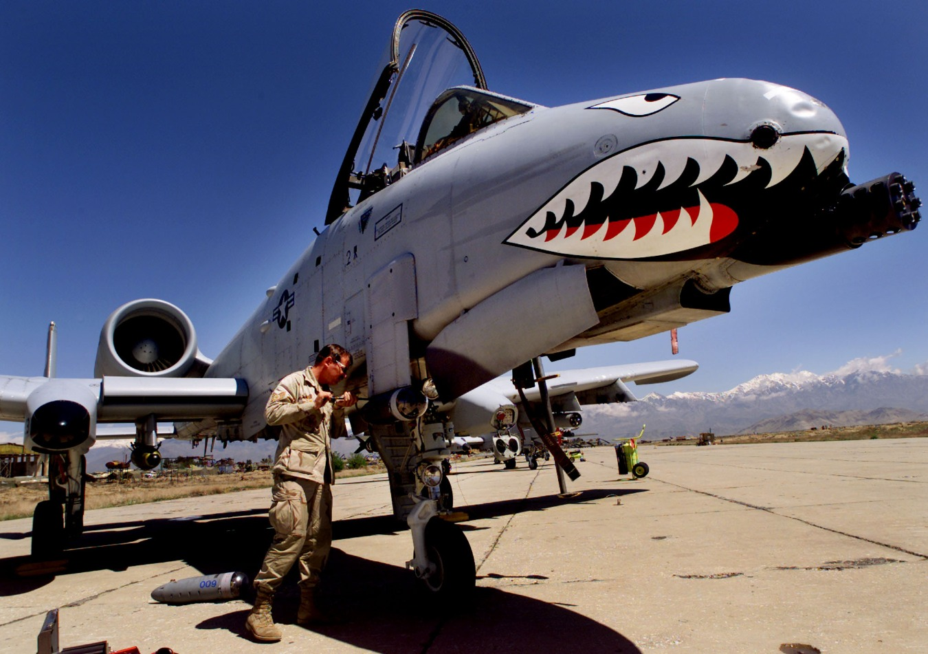 No One Can Kill The A-10 Warthog, Not Even The U.S. Military