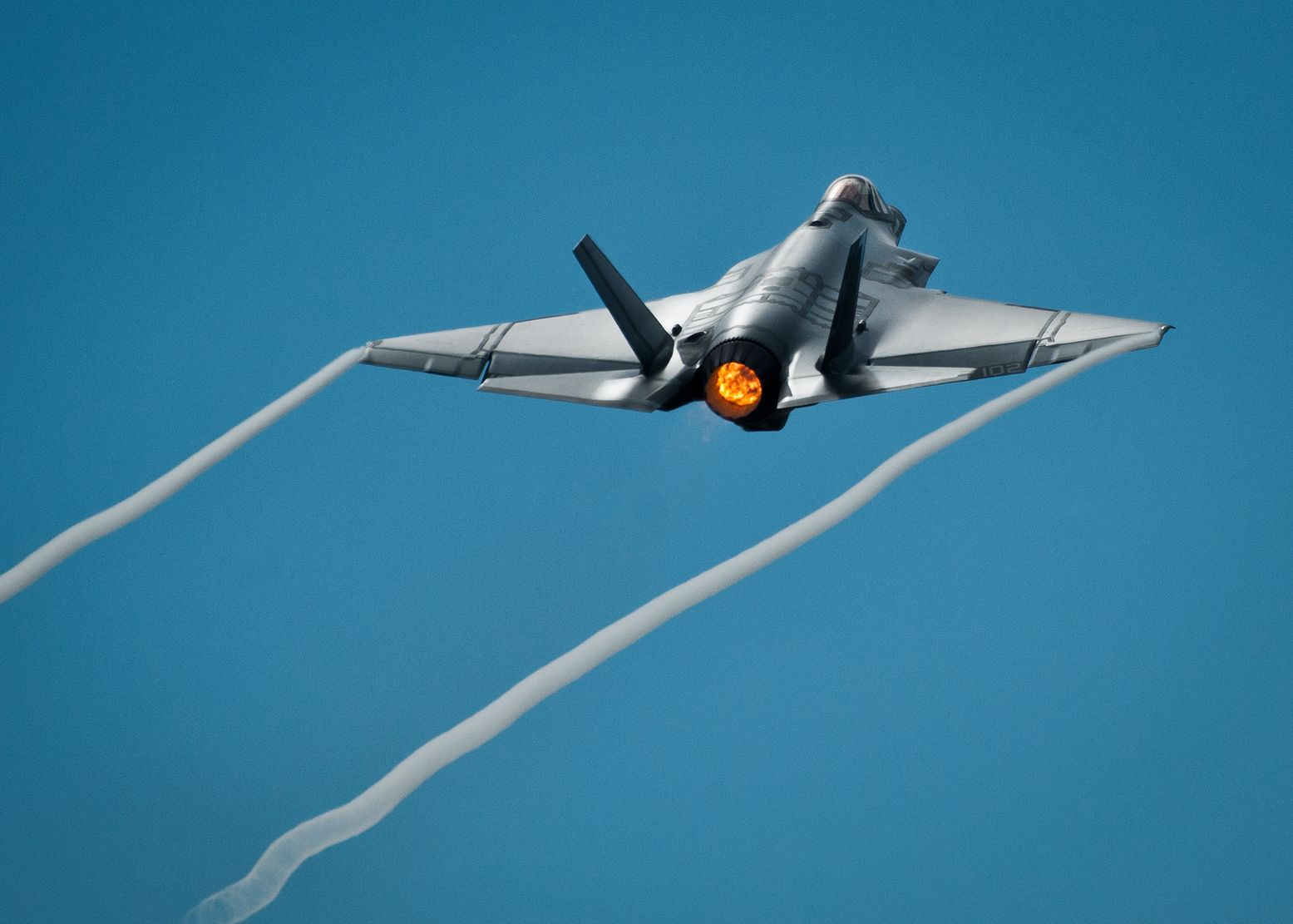 How One Bird Caused over $2 Million Damage to an F-35