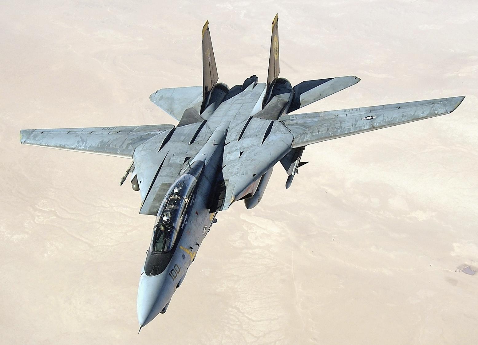 The Grumman F-14A/B/D Tomcat - cover