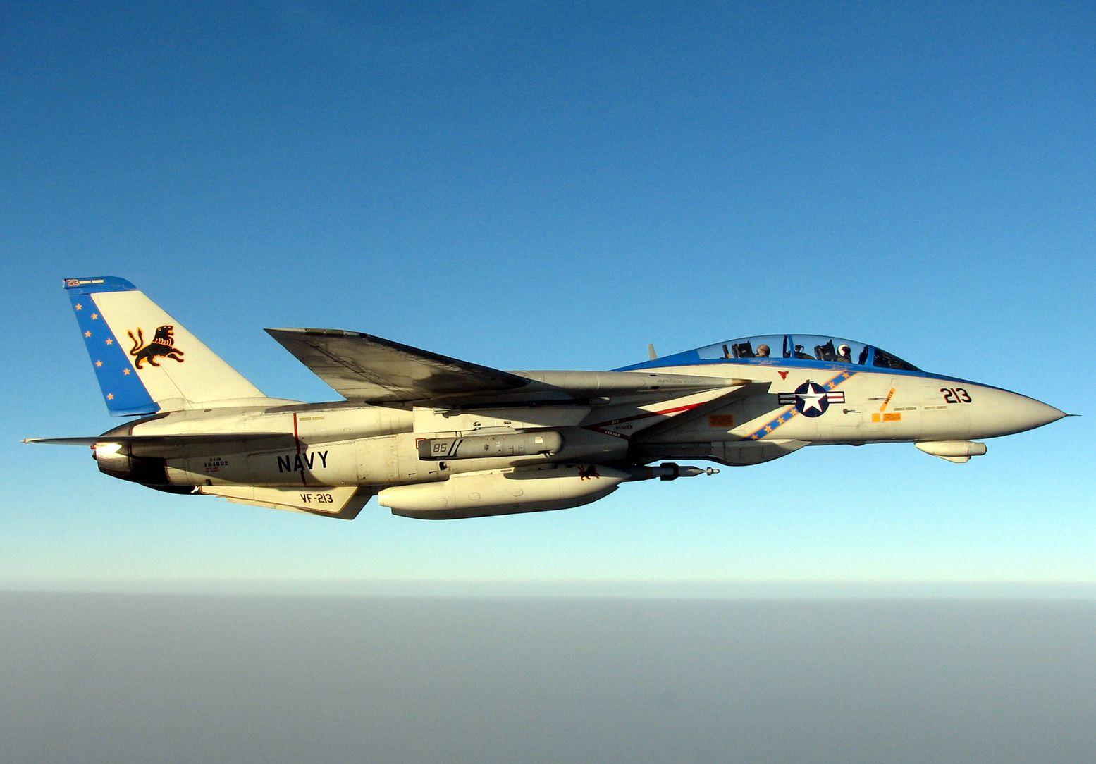 Send in the F-22s: Why Iran's F-14s Are No Joke