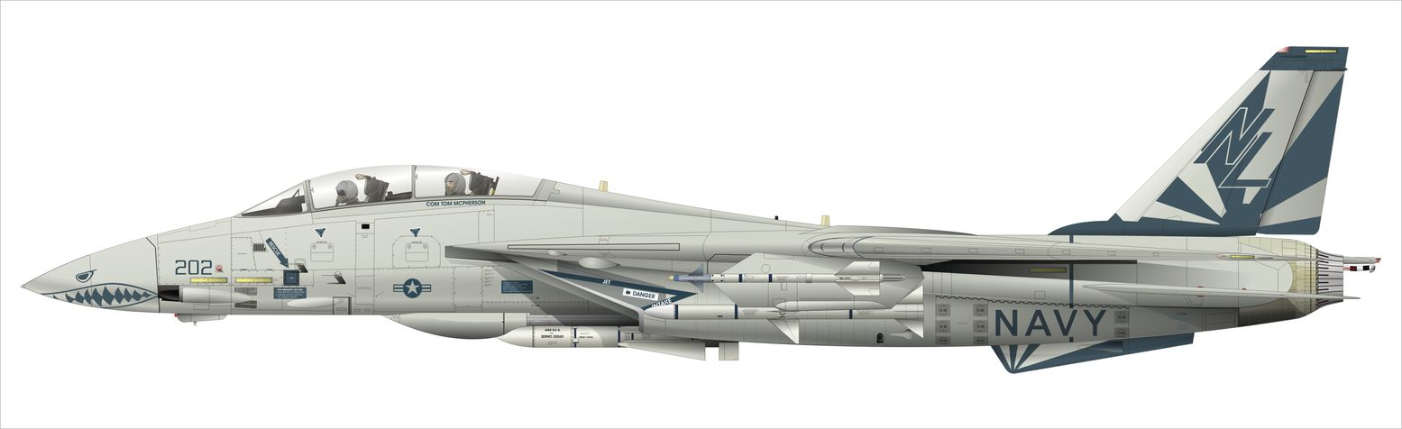 Forgotten History: One Time, Navy F-14 Tomcats Attacked Saddam