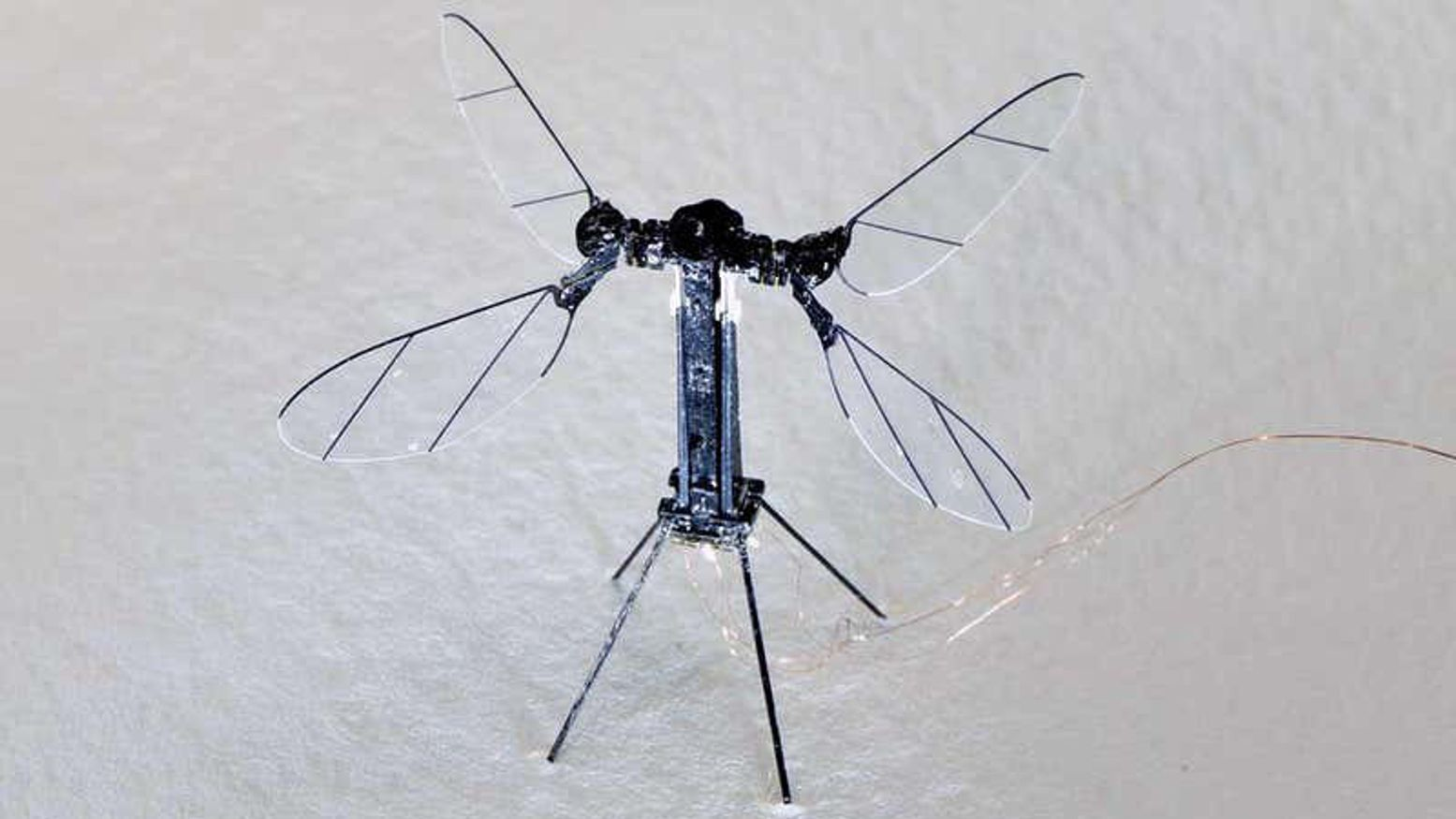 Revolutionary Insect-Based Drone Is Only 2.6-Inches Large but Has One