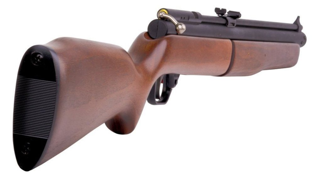 10 Best Pellet Guns for Hunting in 2019 (Complete Guide