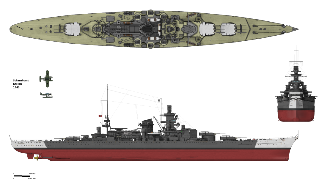 with the battle cruisers english edition