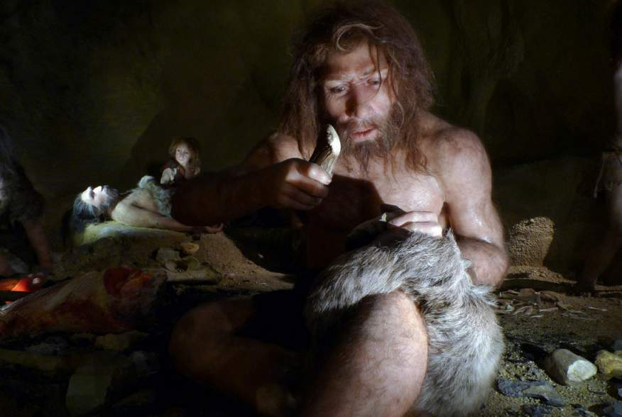 An exhibit shows the life of a neanderthal family in a cave in the new Neanderthal Museum in the northern town of Krapina February 25, 2010.