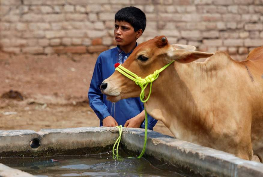 https://pictures.reuters.com/archive/PAKISTAN-DAILYLIFE--RC11DFE721F0.html