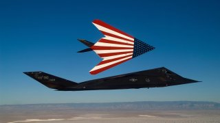 Two specially painted F-117 Nighthawks fly on one of their last missions. The F-117s were retired in a farewell ceremony at Wright-Patterson Air Force Base, Ohio, April 22, 2008. (U.S. Air Force photo by Senior Master Sgt. Kim Frey)