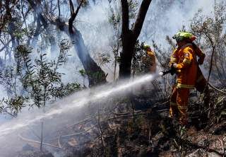 Rural Fire Service (RFS) firefighters try to extinguish a small fire approaching homes near the Blue Mountains suburb of Blackheath, located around 70 kilometres (44 miles) west of Sydney October 23, 2013.