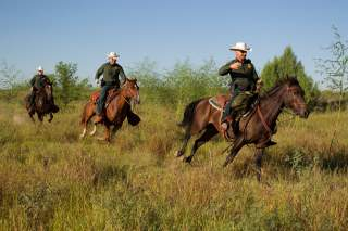 By U.S. Customs and Border Protection - South Texas, Border Patrol Agents, McAllen Horse Patrol Unit, Public Domain, https://commons.wikimedia.org/w/index.php?curid=32049271