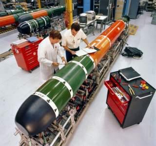 https://en.wikipedia.org/wiki/Mark_48_torpedo#/media/File:Mk_48_torpedo_maintenance_1982.JPEG