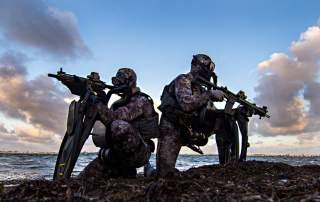 https://www.dvidshub.net/image/5415537/military-dive-operations