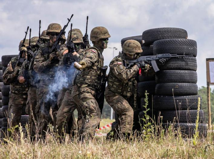 https://www.dvidshub.net/image/5583237/battle-group-poland-participates-epic-local-military-event-tank-battle