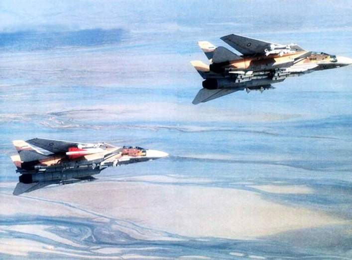 Iran Air Force Grumman F-14A Tomcat fighters armed with multiple missiles: the right-hand aircraft is carrying four AIM-54 Phoenix, two AIM-7 Sparrow and two AIM-9 Sidewinder.