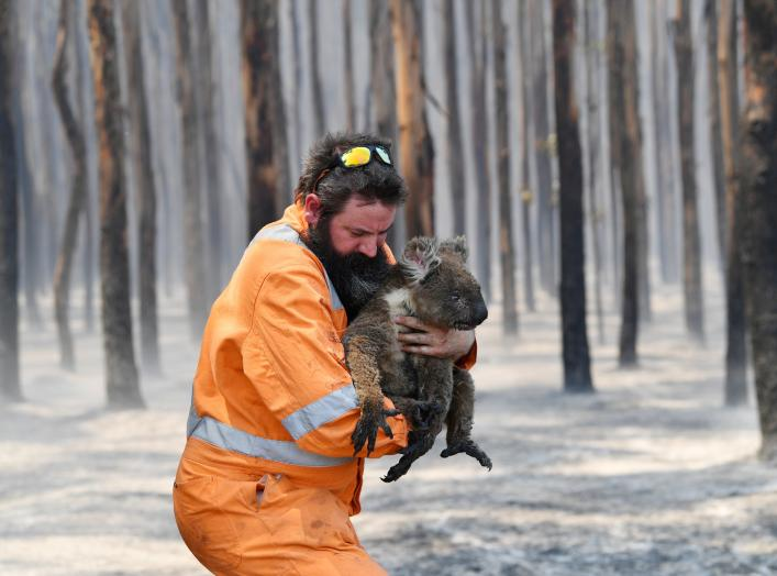 Adelaide wildlife rescuer Simon Adamczyk is seen with a koala rescued at a burning forest near Cape Borda on Kangaroo Island, southwest of Adelaide, Australia, January 7, 2020. AAP Image/David Mariuz/via REUTERS