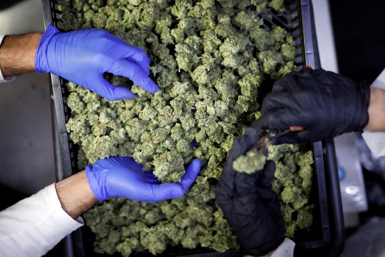 New Studies Show Smoking Marijuana Can Harm Your Heart