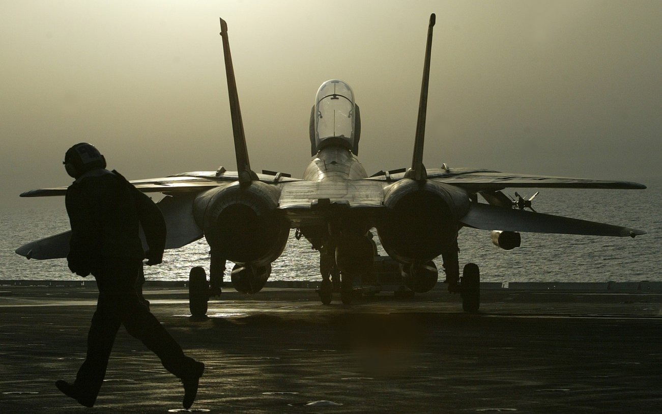 Stealth Killer: Could a Seasoned F-14 Tomcat Kill the F-22 or F-35?