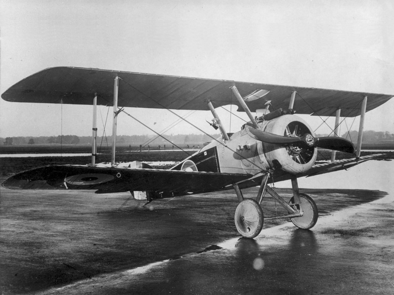 This Was the Best Fighter of the First World War