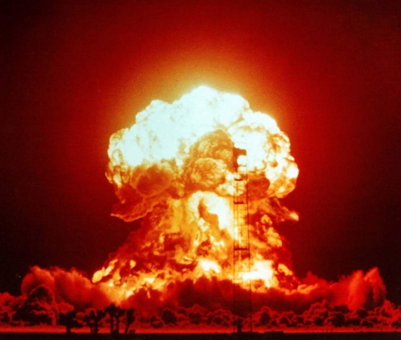Image result for Germany and Turkey want nuclear weapons
